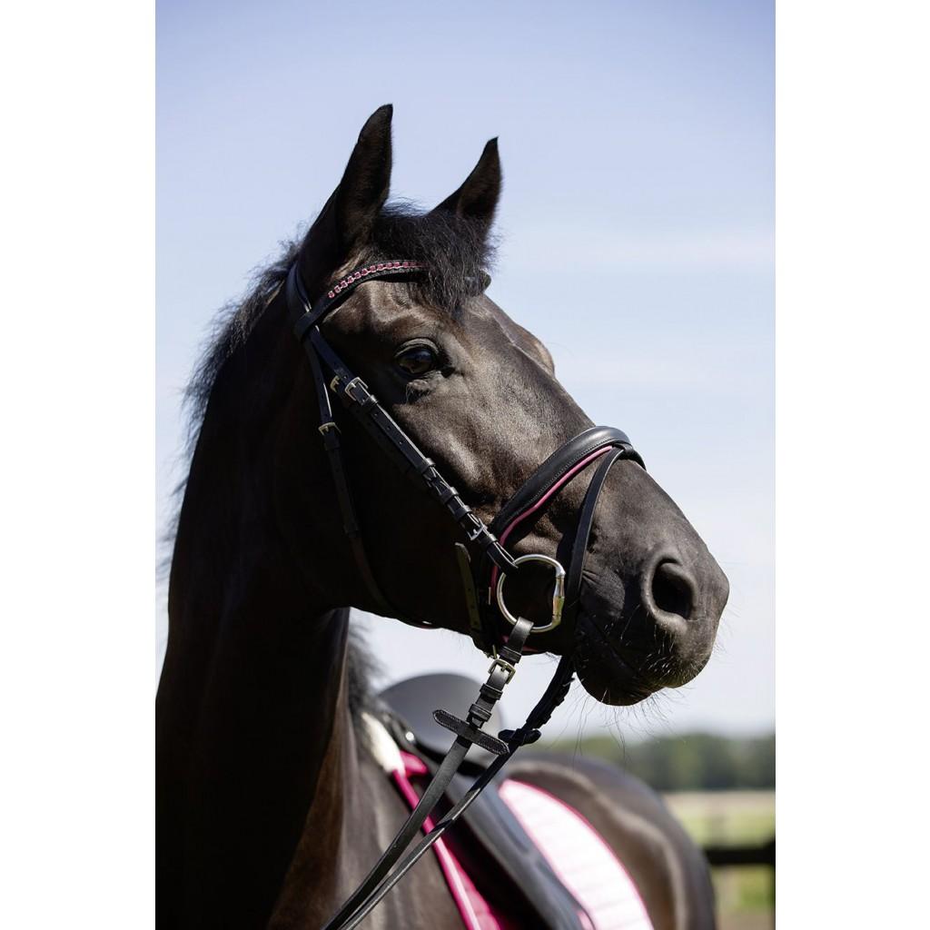 HKM Horse Bridle Colour